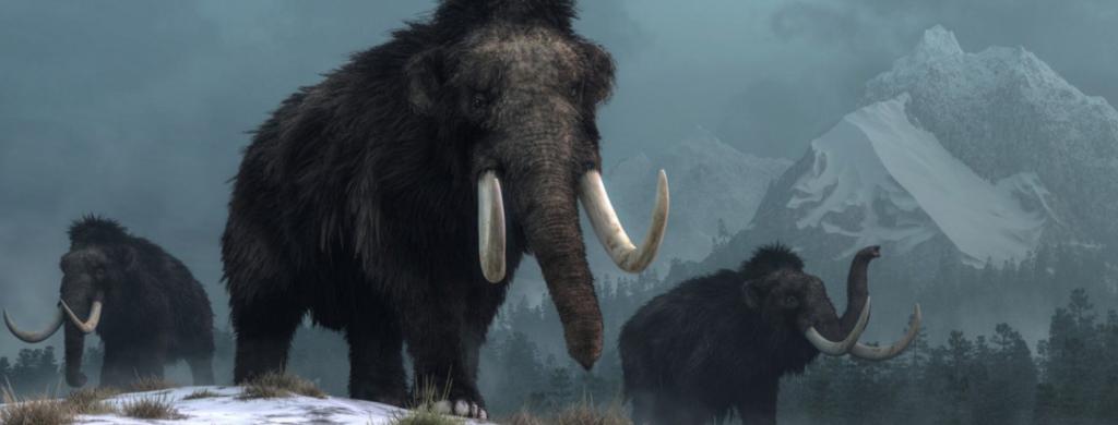News & prioslav.ru: Исчезнувшие животные древнего мира - Мастодонт