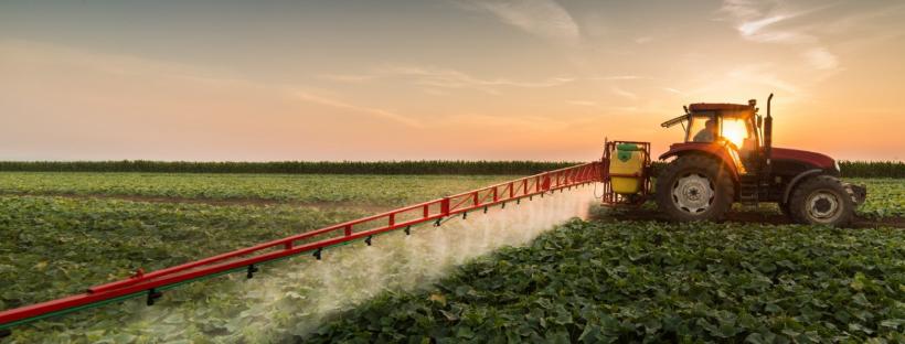 Почему продовольственная безопасность в мире находится под угрозой?
