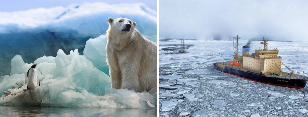 News & prioslav.ru: Насколько метров может подняться уровень океана из-за таяния ледников в Арктике?
