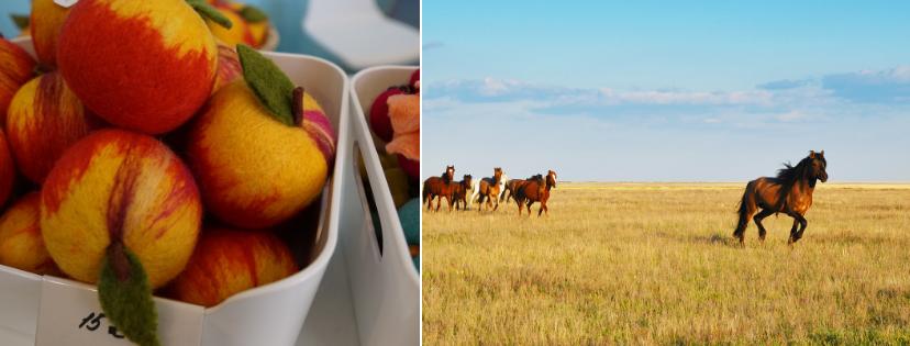 News & prioslav.ru: Казахстан ценит лошадей, но при этом конь является любимой пищей