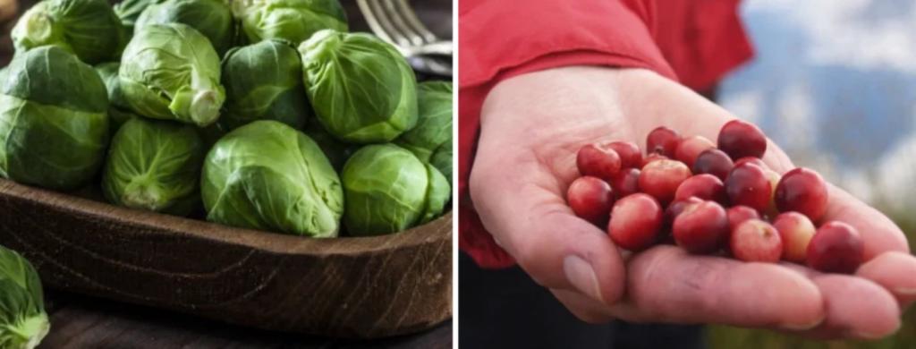 News @ prioslav.ru: Продукты для похудения: Брюссельская капуста / Клюква
