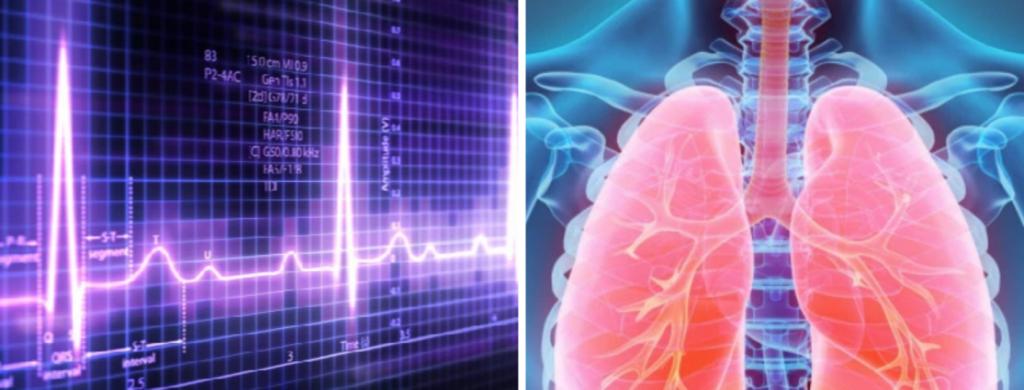 News @ prioslav.ru: Сердцебиение курильщика повышается / Легкие курильщика не могут удалить токсины