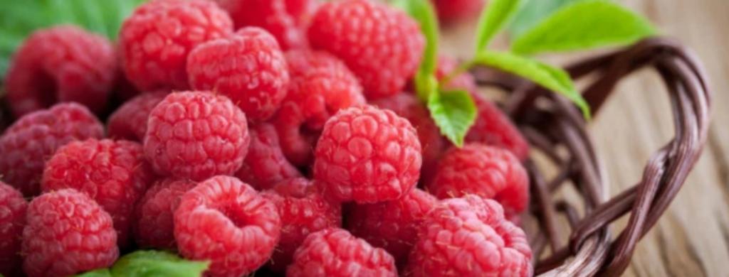 News @ prioslav.ru: 17 лучших продуктов для здоровья вашего кишечника