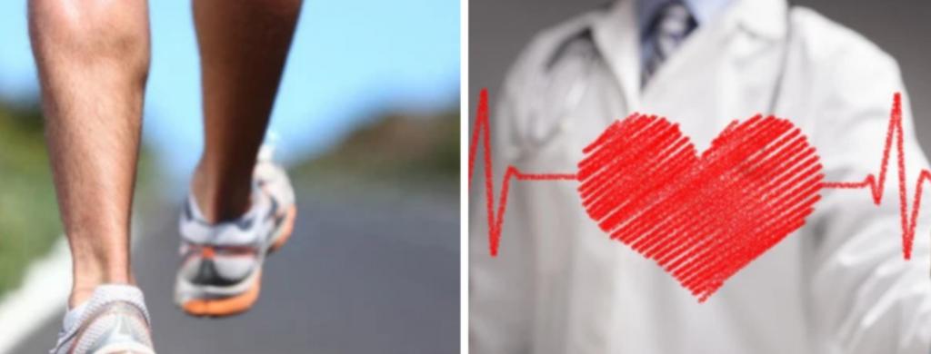 News @ prioslav.ru: Польза ходьбы - Ходьба уменьшает жир / Ходьба улучшает здоровье сердца
